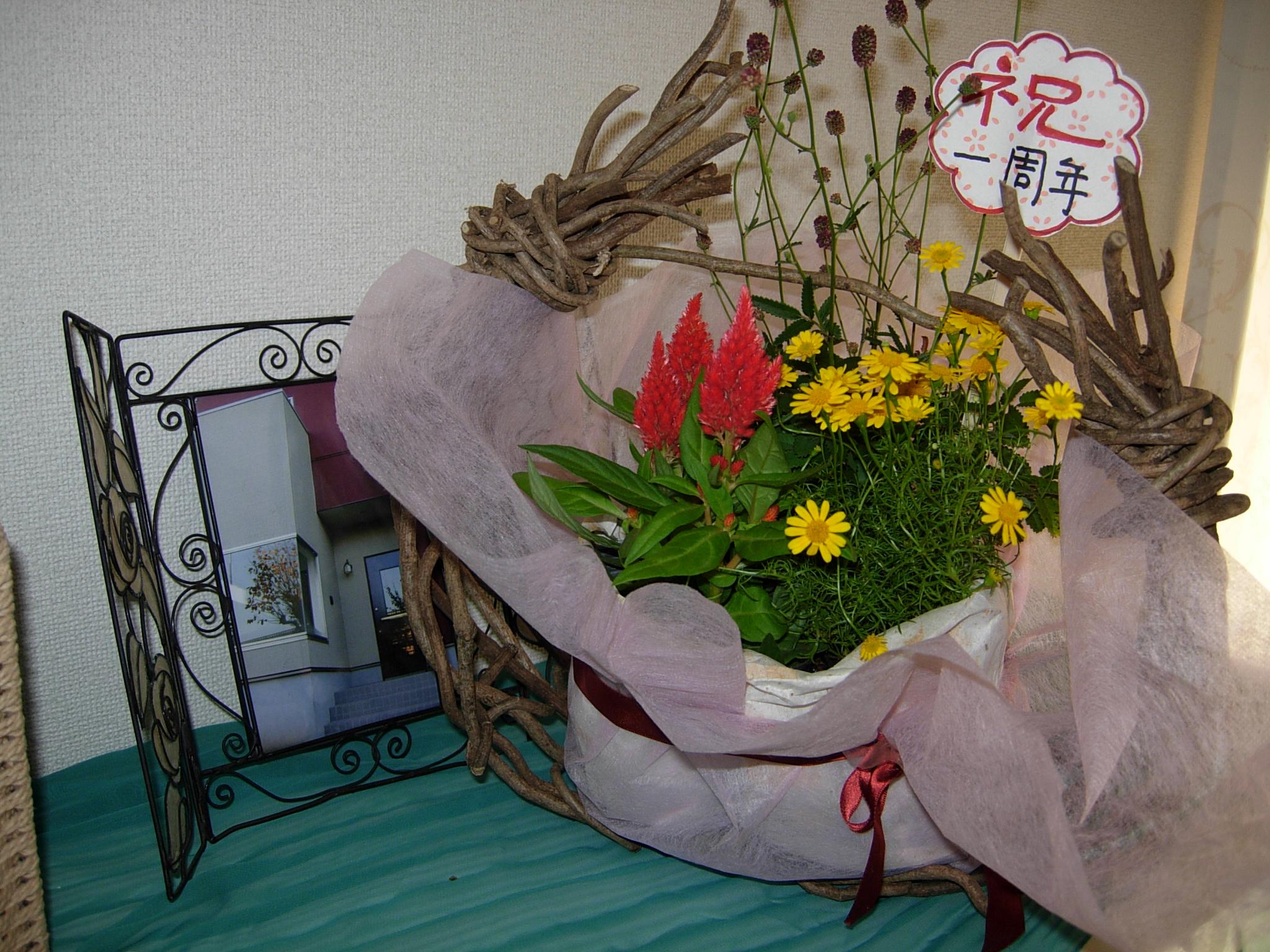 http://chanter-yachiyo.com/2011/07/09/2011_0706_165336-DSCN1455.JPG